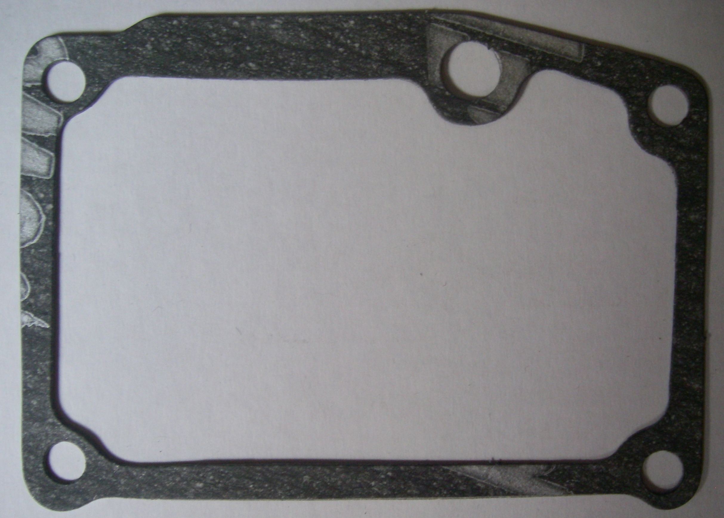 <b>Lister TR1/TS1 Inspection Door Gasket</b>